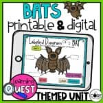 Digital Bat Activities | Fall Activities For October