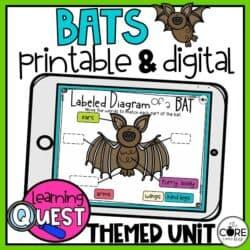 Digital Bat Activities   Fall Activities For October