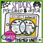 Digital Spider Activities
