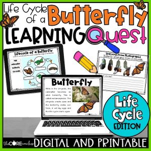 Butterfly Learning Quest
